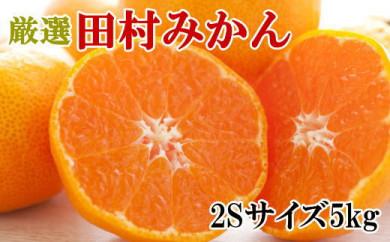 ■【ブランドみかん】田村みかん約5kg(2Sサイズ・秀品)