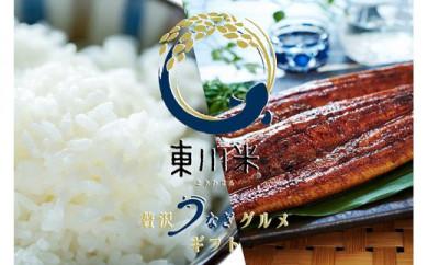 東川米×大崎鰻 東川米とあわせる贅沢うなぎグルメギフト