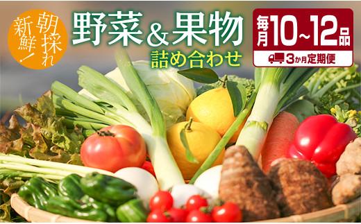 F22-191 ≪3回定期便≫お楽しみ!!朝採れ野菜・果物詰め合わせ(毎月10~12品)