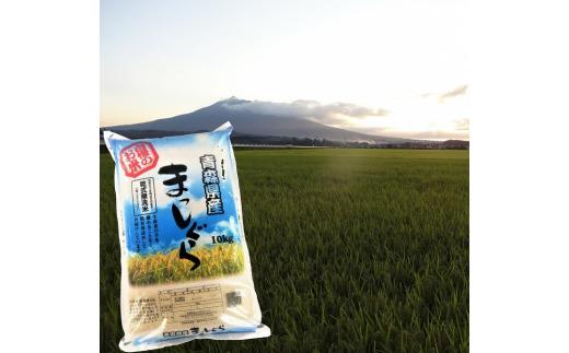 乾式無洗米まっしぐら10kg(精米)[№5898-0359]