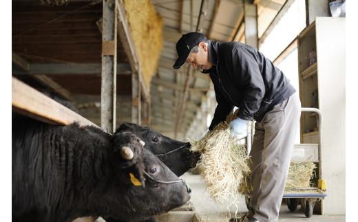 「但馬牛」の子牛に納得行くまで愛情をそそぎ、自然豊かな環境の中で育て上げた傑作の牛が「黒田庄和牛」です。