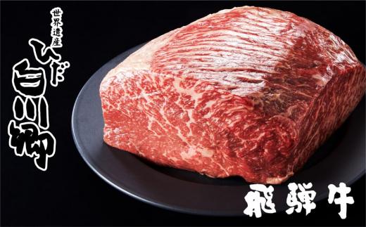 飛騨牛ブロック [塊] 霜降り肉 赤身肉 ブロック肉 セット[S046]