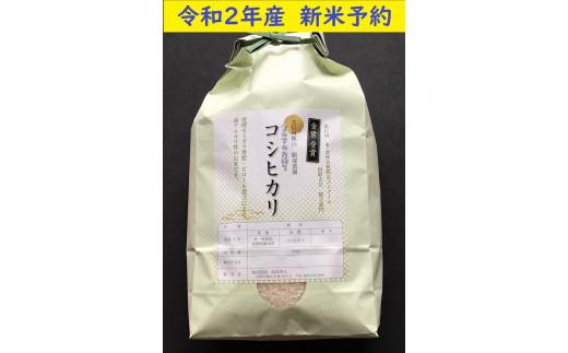 2-43 【令和2年産 新米予約】 服部農園の「有機肥料栽培ピロール・コシヒカリ」5kg