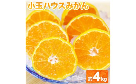 熊本県産 小玉ハウスみかん 約4kg S-2Sサイズ 熊本県(荒尾市含む)産 《7月上旬-7月末頃より順次出荷》 先行予約 フルーツ 旬 柑橘 小玉 みかん