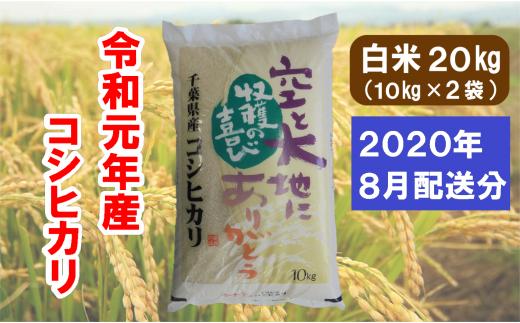 I01-502 長生産コシヒカリ(白米20kg)令和元年産 ※2020年8月配送分