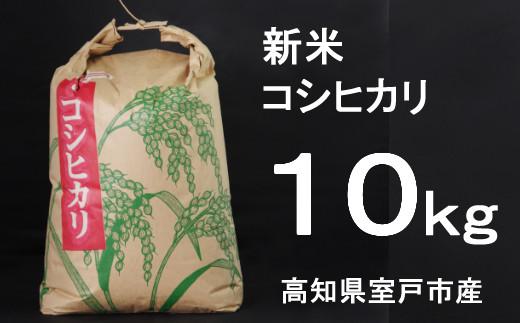 TA016室戸産新米コシヒカリ10kg