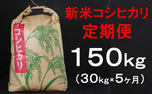TA020室戸産新米コシヒカリ計150kg定期便