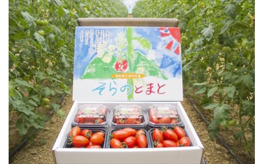 Ba27-1 そらのミニトマト 約1.2kg  (7月ころより発送開始)