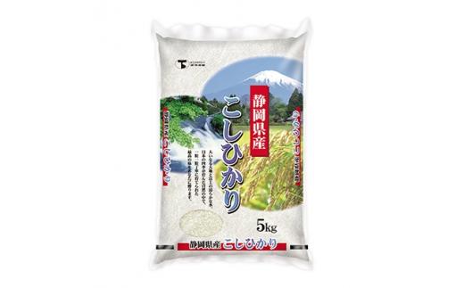 静岡こしひかり 精米10kg(5kg×2袋)【1115074】