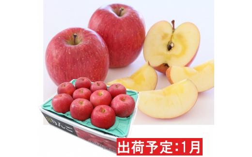 [№5731-1457]年明け 蜜入り 糖度保証サンふじ約3kg 青森県平川市産