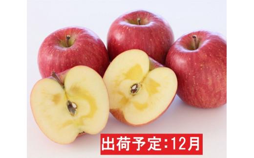 [№5731-1458]年内 蜜入り 糖度保証サンふじ約2kg 青森県平川市産