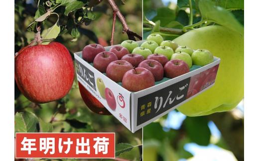 [№5731-1455]年明け サンふじ×王林約5kg 青森県平川市産