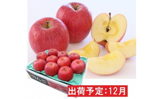 [№5731-1456]年内 蜜入り 糖度保証サンふじ約3kg 青森県平川市産