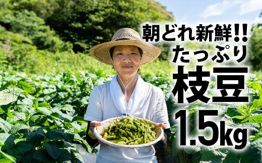 Fiz-01 朝どれ新鮮!夏の味覚「枝豆」たっぷり1.5㎏