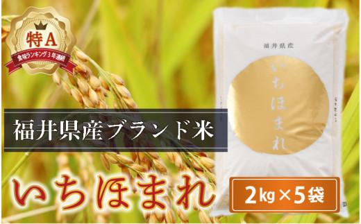 [B-0207] さんさん池見二代目がお届けする 福井県産いちほまれ 2kg × 5袋 計10kg