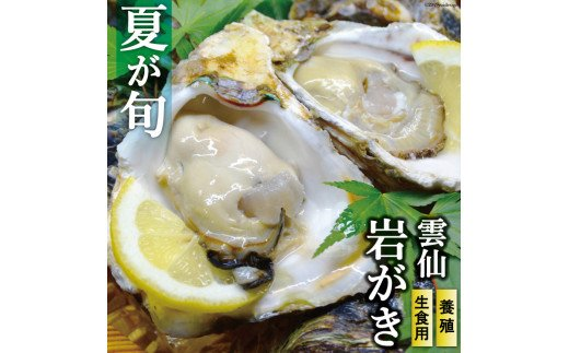 長崎県産 雲仙岩がき(牡蠣) 約3kg