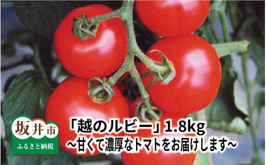 [A-1105] 「越のルビー」 1.8kg ~甘くて濃厚なトマトをお届けします~【数量限定】