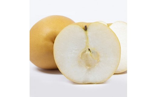 大玉の梨「新高」5kg(5~6個)<谷農園>【1107706】
