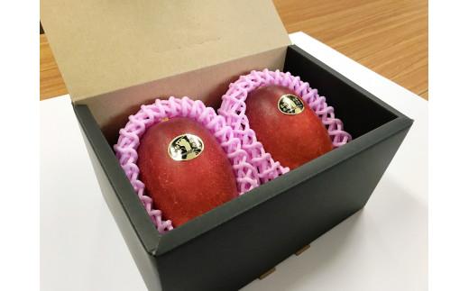 宮崎県産完熟マンゴー(L×2玉)