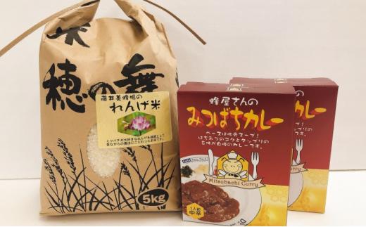 [№5656-1271]藤井養蜂場のれんげ米、オリジナルみつばちカレーセット