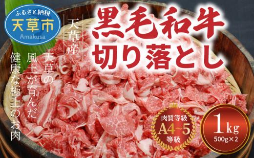 S001-001_熊本県天草産 黒毛和牛 切り落とし 1kg A4~A5ランク