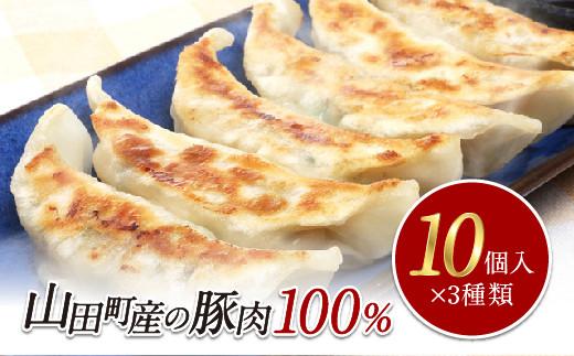 びはん 山田の餃子 食べ比べセット【配送日指定不可】