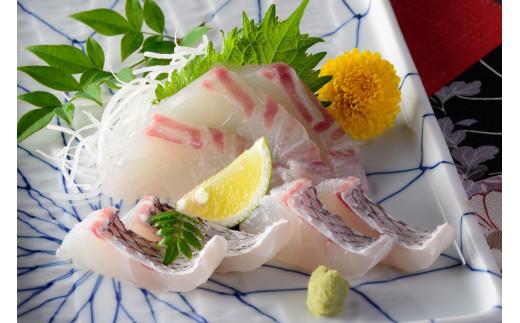 KA02-301 愛媛県産養殖真鯛フィレ2枚(お頭つき冷凍)×2尾分
