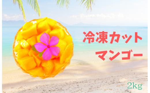 【6月~8月限定】冷凍カットマンゴー 2kg(1㎏×2袋)
