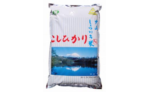 【20-005-003】大山しらゆき米5kg(精白米・こしひかり)