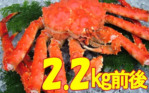 48-6 こだわりの紋別産 浜茹でタラバガニ(2.2kg前後)