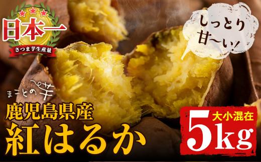 a5-003 まことの芋 紅はるか 5キロ(大小混載)