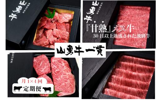飛騨牛 山勇牛 定期便 4回4か月 焼肉 ステーキ すき焼き しゃぶしゃぶ サーロイン 赤身ステーキ など