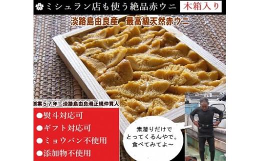 AU88:ミシュラン店も使う淡路島由良産赤ウニ【木箱入り最高級1枚】ミョウバン不使用完全無添加