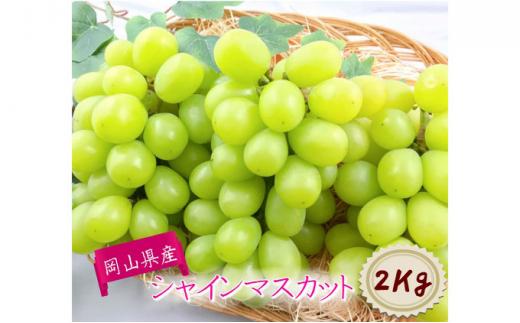 [№5707-0330]岡山県産 シャインマスカット【9月発送分】約2kg