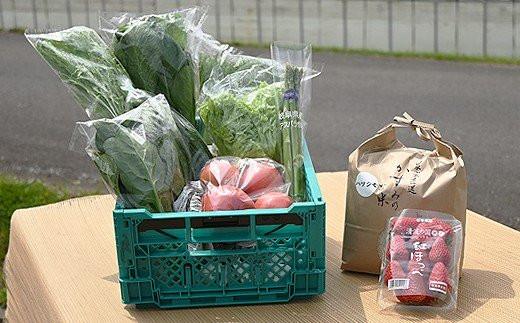 M17S17 みのかも野菜セット(春(3・4・5月)、秋(9・10・11月)2回)