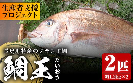 新鮮で美味しい鯛王2匹セットでご提供いたします