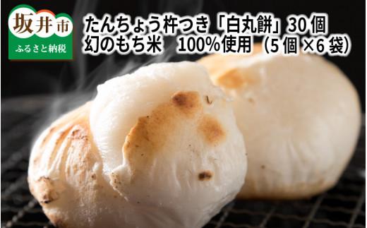 [A-2909] たんちょう杵つき「白丸餅」 計30個 ~幻のもち米100%使用~