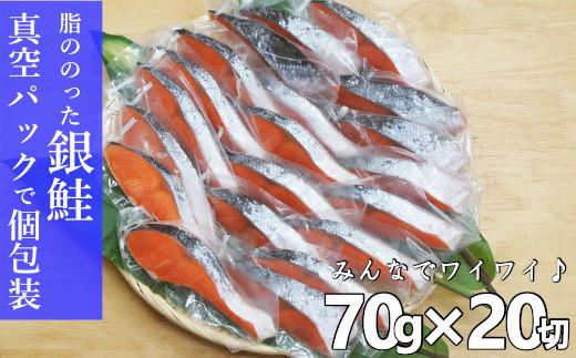 鮭(さけ)切り身ファミリーパック 人気の個包装 1.4kg A718