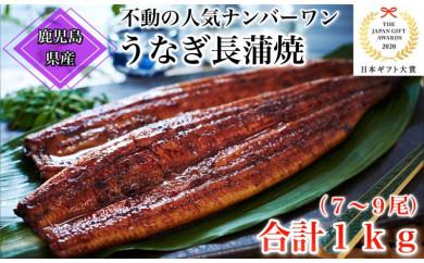 【応援特別品】鹿児島県産うなぎ蒲焼合計1kgセット(7尾~9尾)