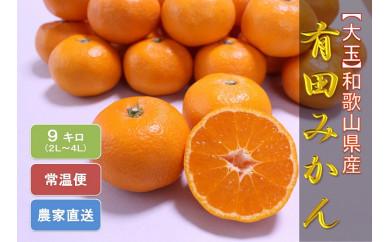 ■【大玉】 和歌山県産 有田みかん 9kg[2020年11月~発送]