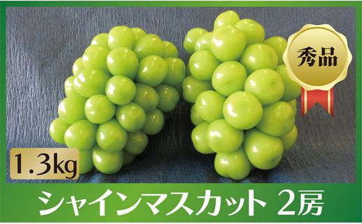 B0-097 【厳選大粒】シャインマスカット 1.3kg 2房入り