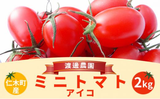 [№5613-0307]北海道仁木町産ミニトマト【アイコ】1kg×2箱