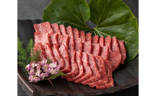 No.213 くまもとあか牛(GI) 焼肉用約500g / 牛肉 ブランド牛 お肉 熊本県