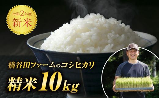 令和2年度新米 コシヒカリ 精米 10kg