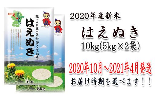 A-14220【2020年(令和2年)産】山形県河北町産米はえぬき10kg(5kg×2袋)【JAさがえ西村山】
