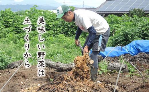 小布施の土地から採取した微生物を培養して土に入れたり、鶏糞を肥料にしたり、独自の有機肥料を作ったり、土づくりからこだわります。