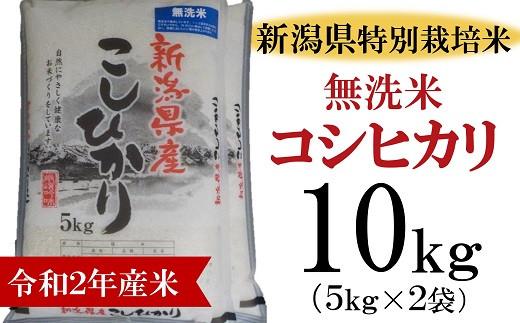 [B333]柏崎産 コシヒカリ 無洗米 10kg