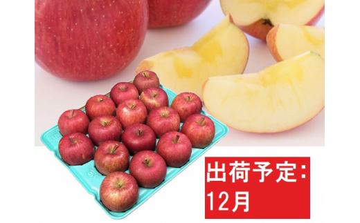 [№5526-1099]12月  家庭用蜜入りサンふじ約5kg【訳あり】青森津軽りんご