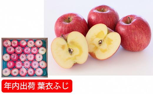 [№5526-1107]年内 蜜入り糖度保証葉衣ふじ約10kg家庭用 青森津軽りんご