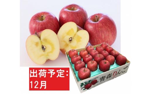 [№5526-1097]12月  特A 蜜入りサンふじ約5kg 糖度13度以上 青森津軽りんご